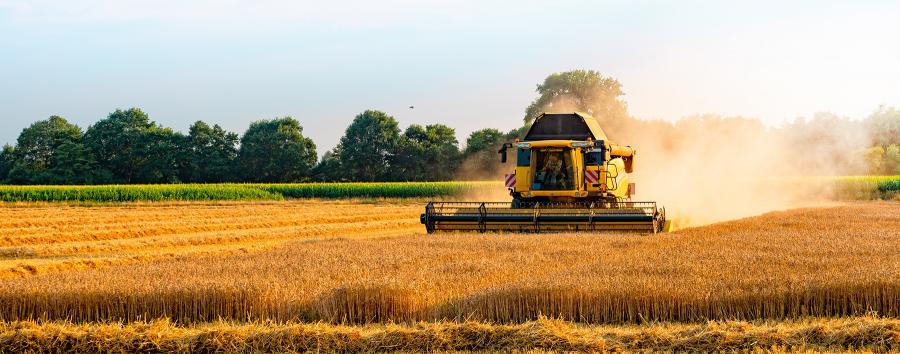 Wheat-Combine