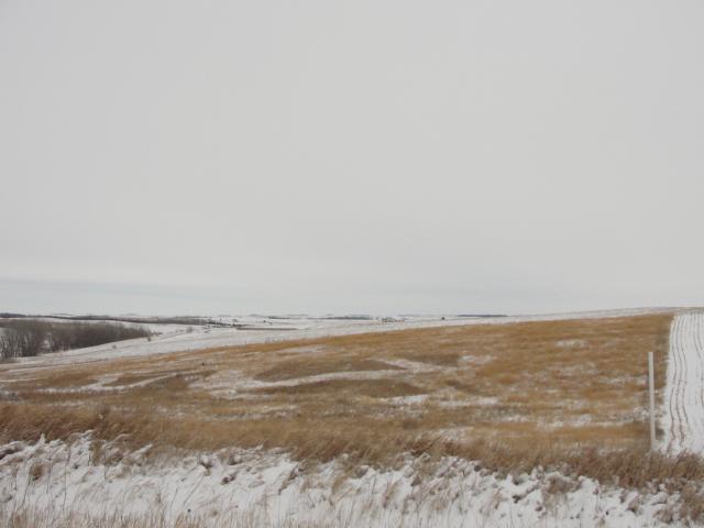 25 Acres Developable Pasture/Building Site, North of Stanton, NE