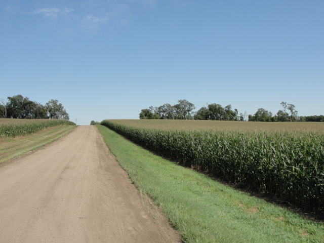 75.83 Acres Dryland Crop Ground, East of West Point, NE