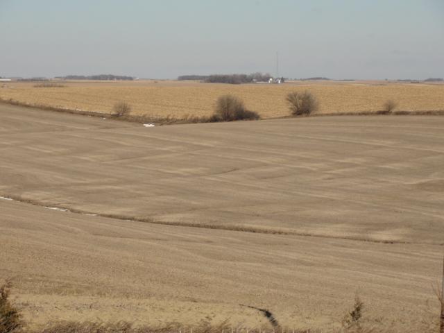 40 Acres Dryland Crop Ground, Northeast of Howells, NE