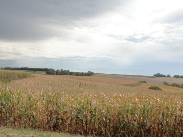 86.675 Acres Dryland Crop Ground, North of Stanton, NE