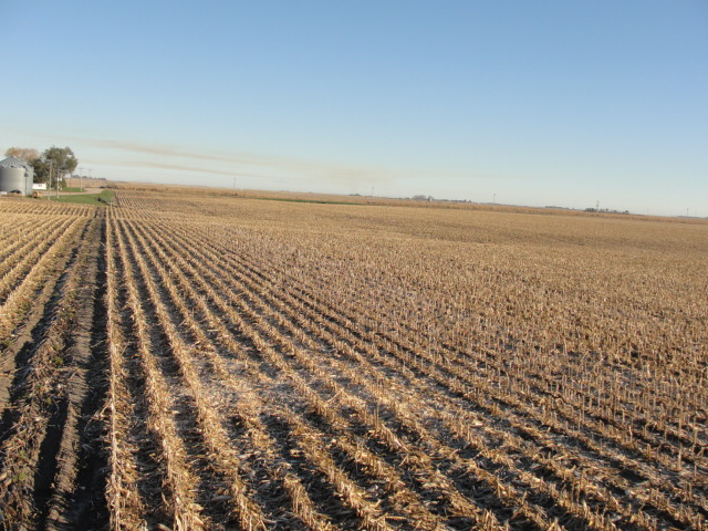155.11 Acres Pivot Irrigated Cropland, North of Rising City, NE