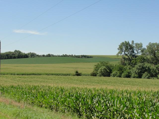 160 Acres Dryland Crop Ground, Northeast of Wisner, NE