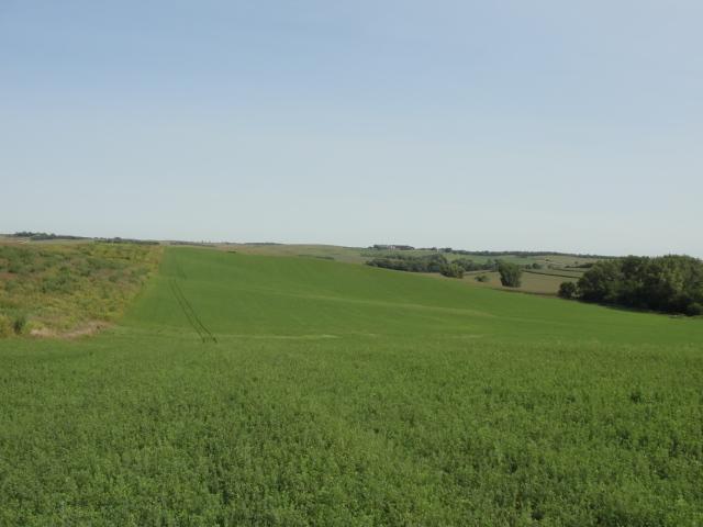 64.66 Acres Dryland Crop Ground, North of Stanton, NE