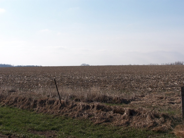 240 Acres Dry Cropland, Southeast of Leigh, NE SELLING AT AUCTION