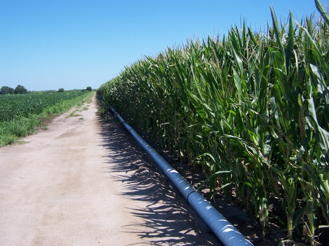 152.83 Acres Pivot Irrigated Cropland, South of Worms, NE