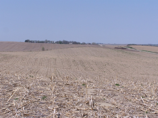 77.27 Acres Dryland Crop Ground, East of Albion, NE