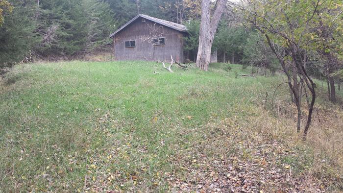 37 25 Acres Native Grass Alfalfa Amp Wilderness Southwest