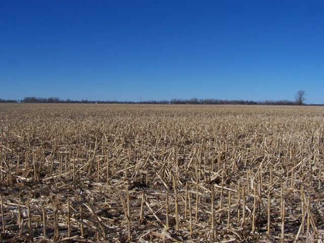 154 Acres Pivot Irrigated Cropland, East of Atkinson, NE