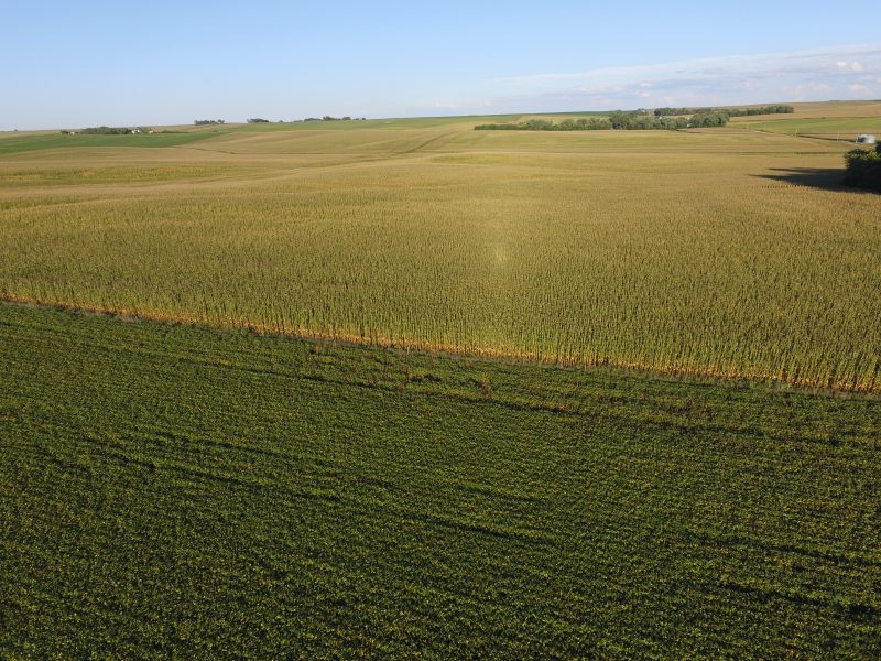 144.24 Acres Dryland, Southwest of Emerson, NE