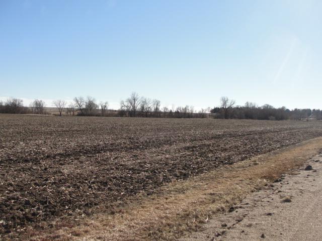 40 Acres Dryland Crop Ground, Northwest of North Bend, NE