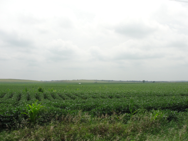 157 Acres Pivot Irrigated Cropland, Southeast of Silver Creek, NE