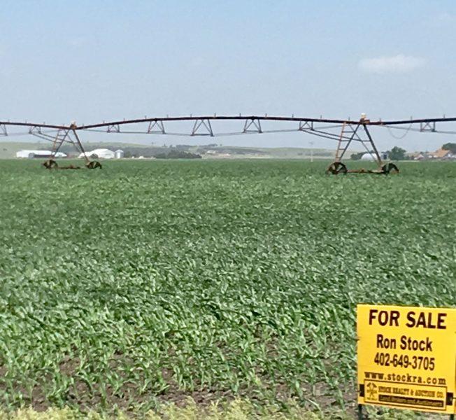 156.97 Acres Pivot Irrigated Cropland, Northwest of Gibbon, NE