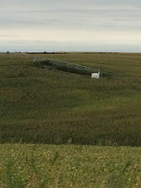 160 Acres Pivot Irrigated Crop Ground, Northwest of Farwell, NE