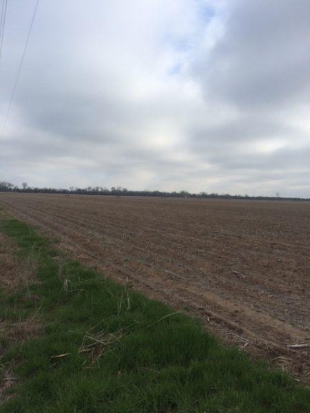 161.66 Acres Pivot Irrigated Cropland, Northwest of Clarks, NE