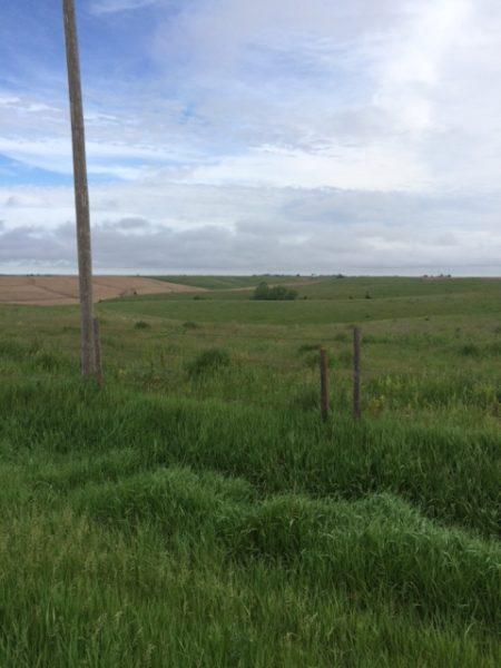 397.35 Acres Combination Farm, North of Cedar Rapids, NE