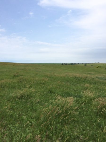 159.01 Acres Pasture Ground, Northwest of Cedar Rapids, NE