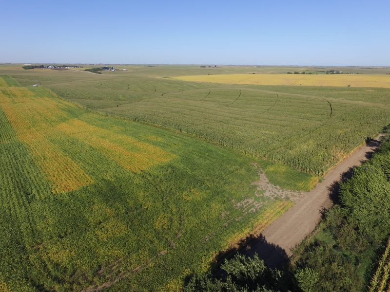 400 Acres Selling in 3 Tracts AT AUCTION