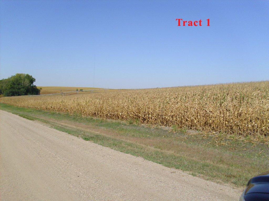Tract-1.jpg