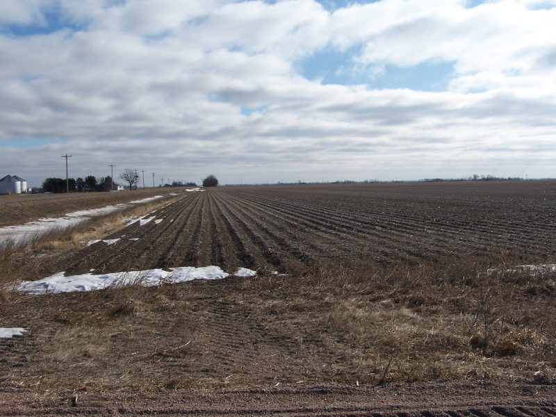 385.16 Acres Selling in 3 Tracts  AT AUCTION