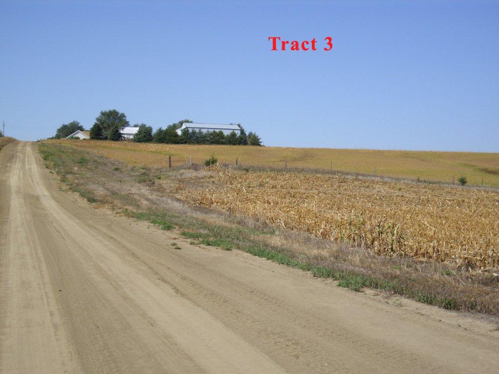Tract-3-1.jpg