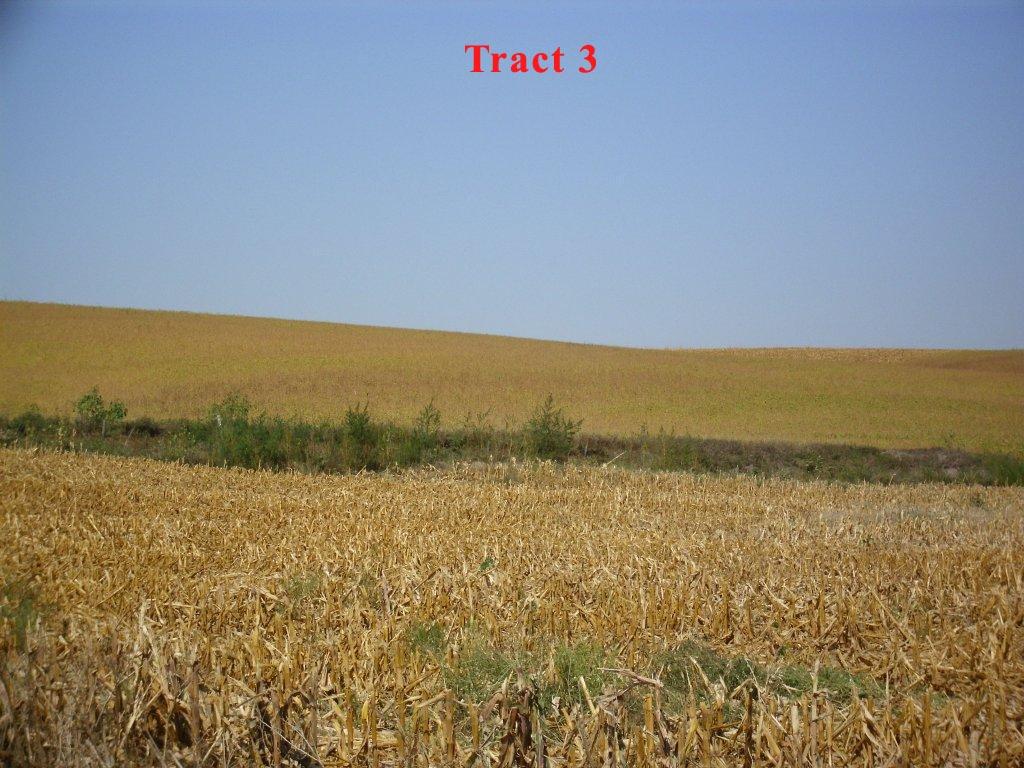Tract-3-2.jpg