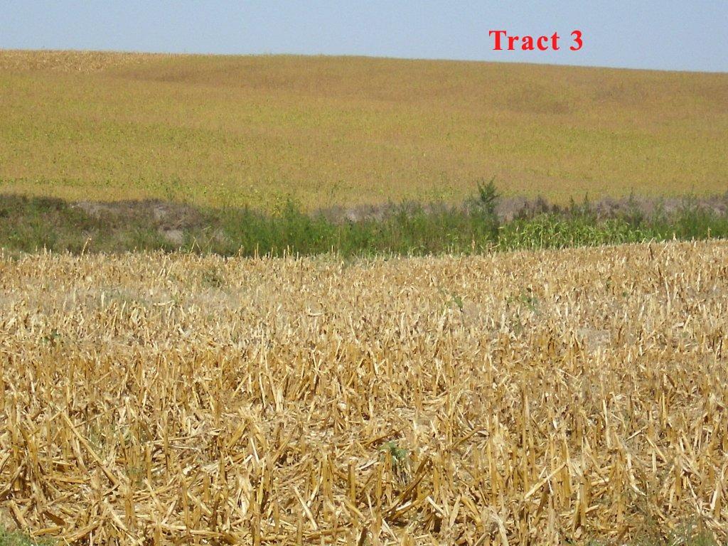 Tract-3-3.jpg