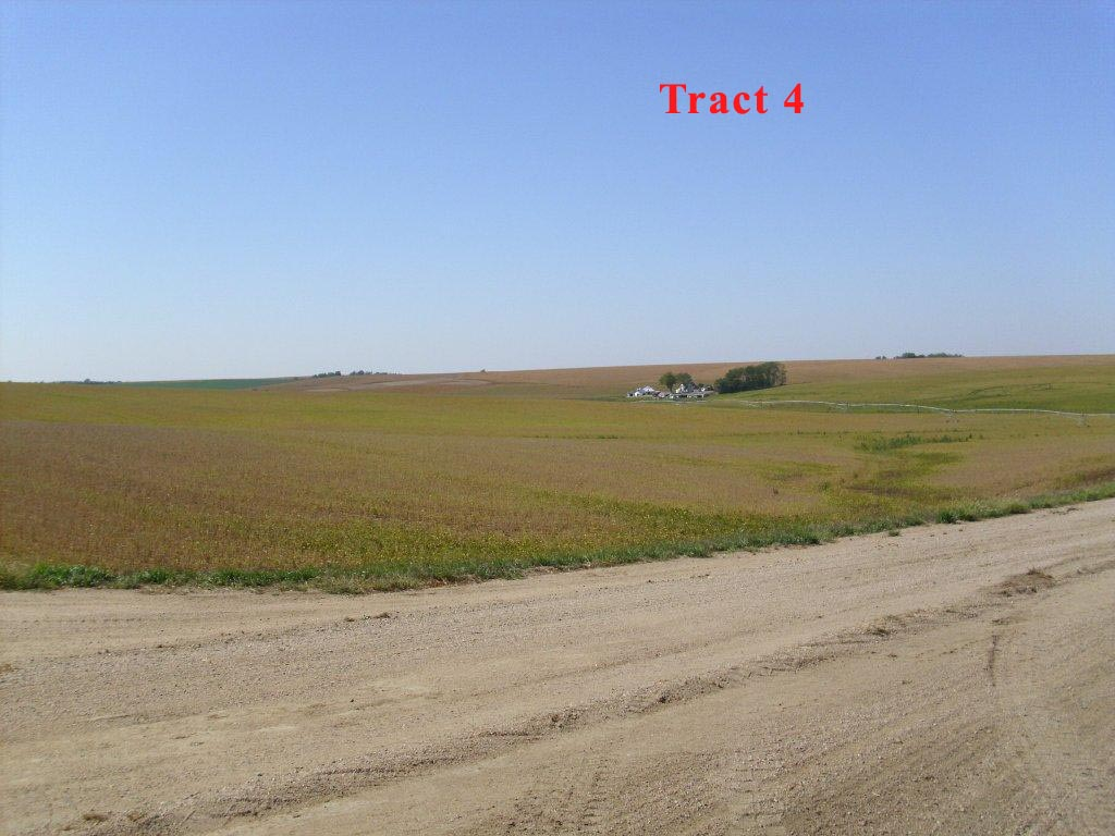 Tract-4-1.jpg