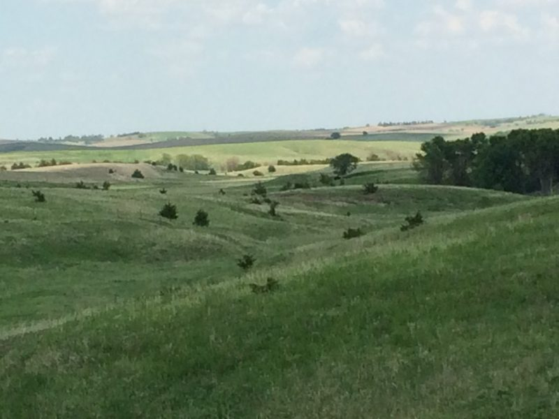 160 Acres Pasture Ground, North of Ashton, NE