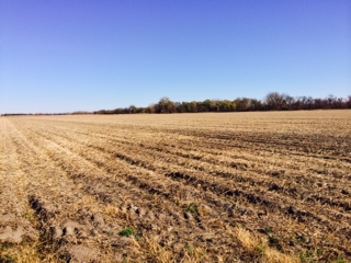 38.58 Acres Gravity Irrigated Cropland, West of Duncan, NE