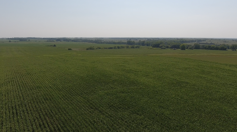 80+/- Acres Rock County