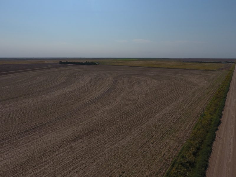 803.39 +/- Acres in Logan County, KS