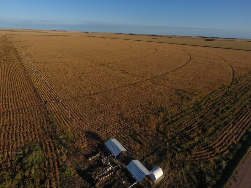 80+/- Acres Pivot Irrigated Cropland, Northwest of Bertrand, NE