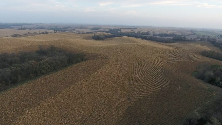 79.95+/- Acres Dakota County, West of Jackson, NE