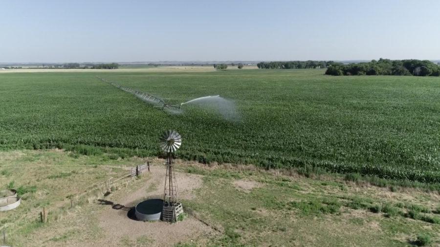 Land Auction 318.62+/- Acres Merrick County, Nebraska