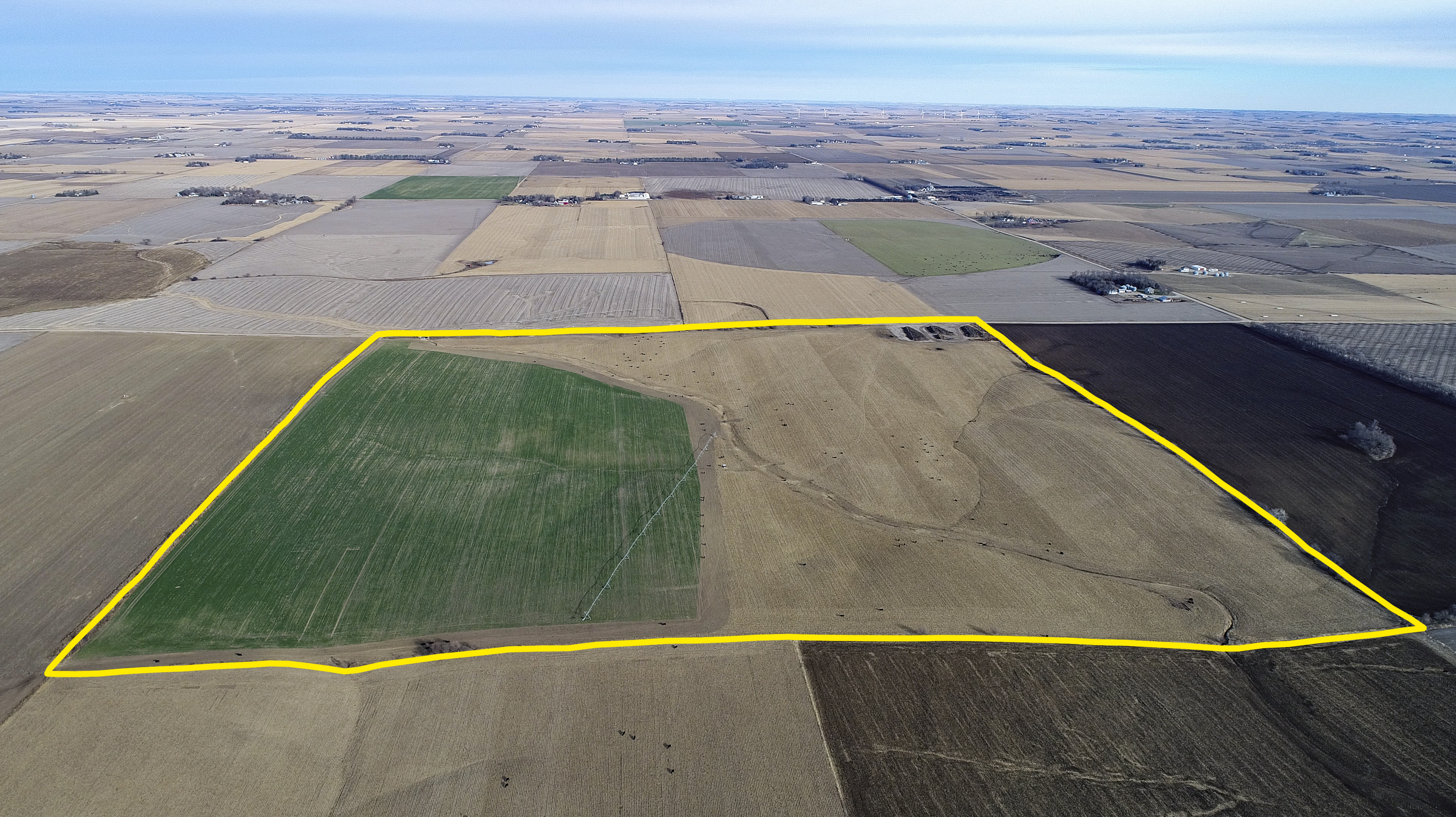 Land Auction 163.4+/- Acres Platte County, Nebraska