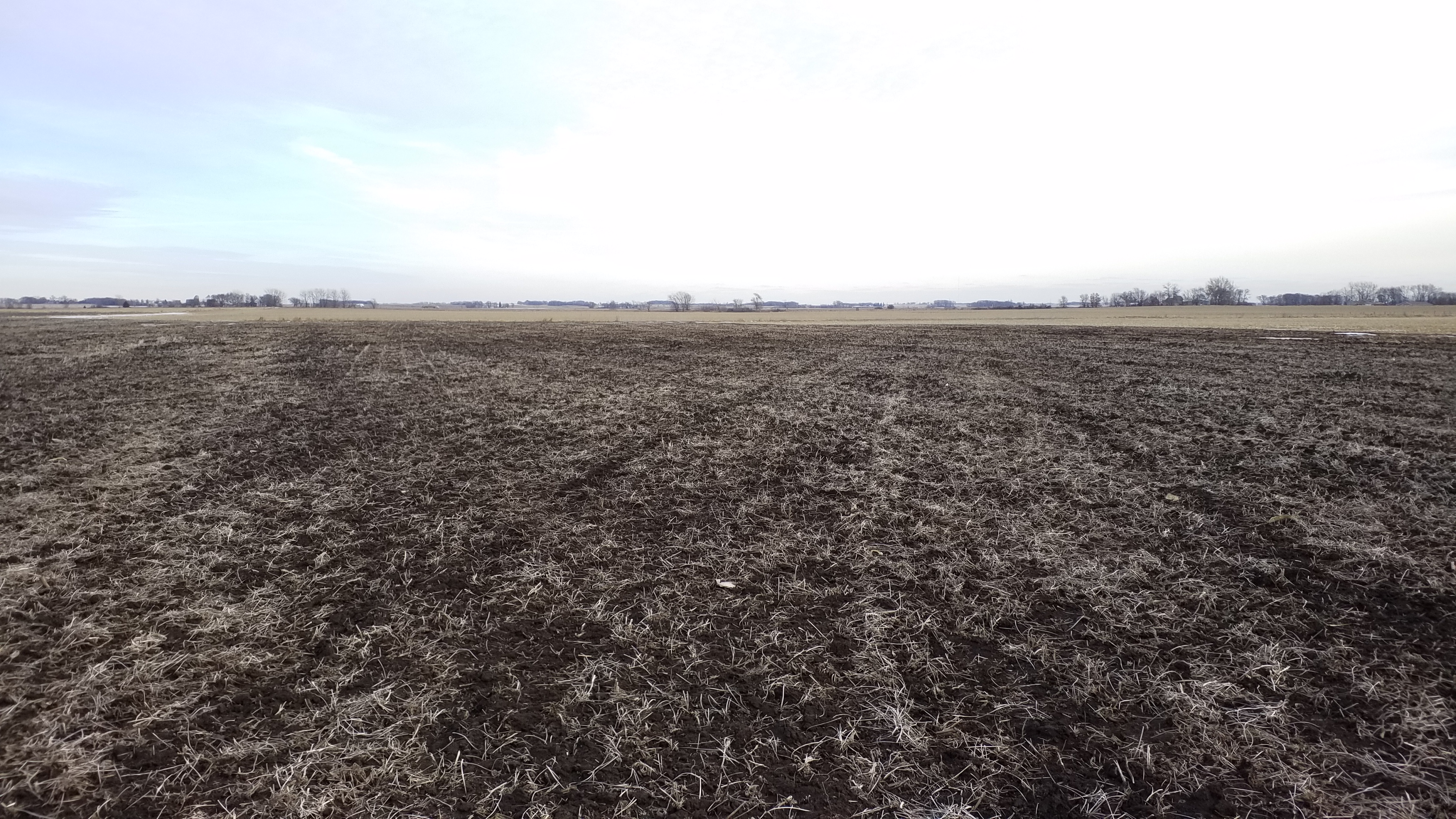Land Auction 35.743+/- Acres Clay County, Iowa