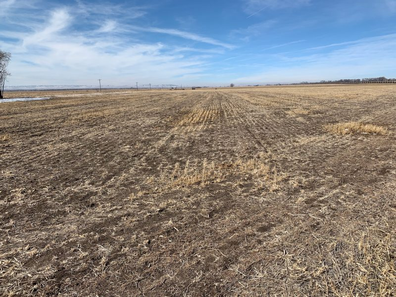 Land Auction 21.27+/- Acres Morrill County, Nebraska