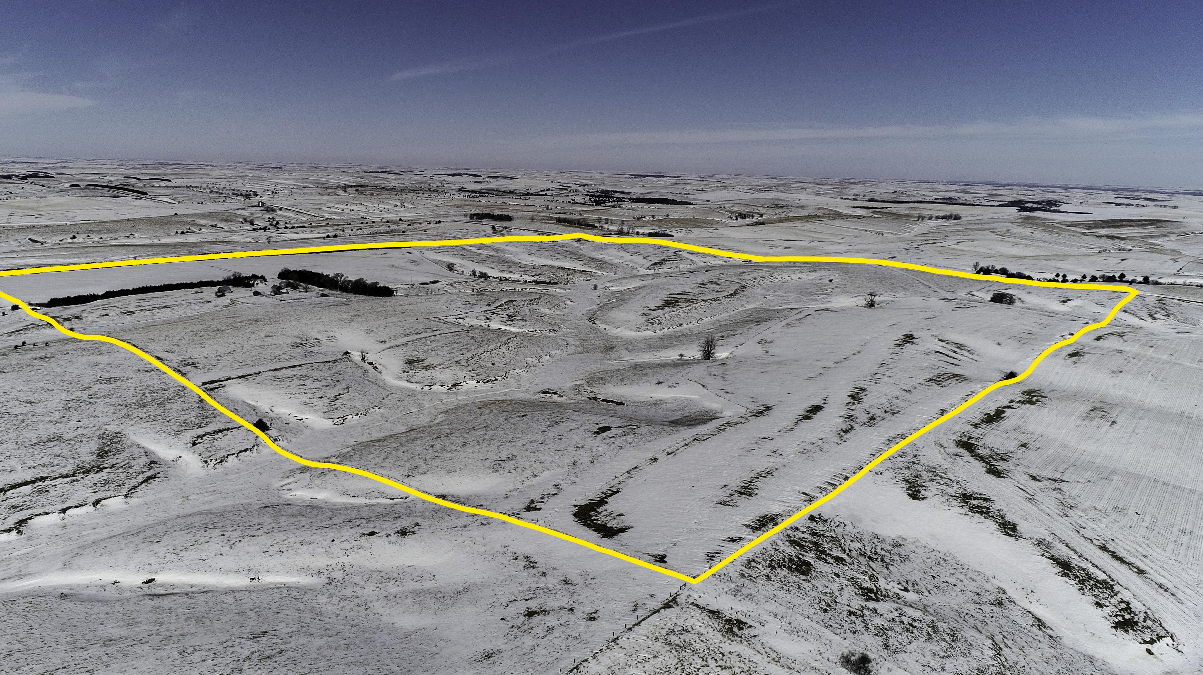 Kaminski_Aerial.jpg