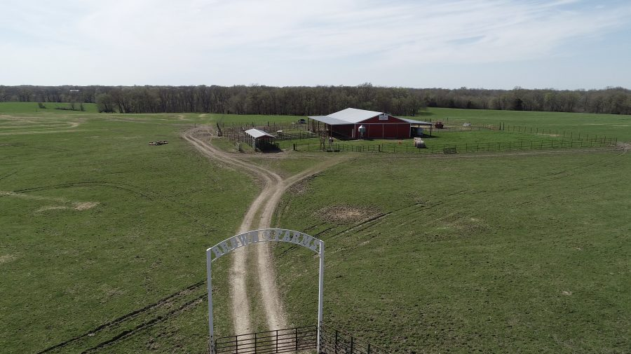 Land Auction 380+/- Acres Pettis County, Missouri