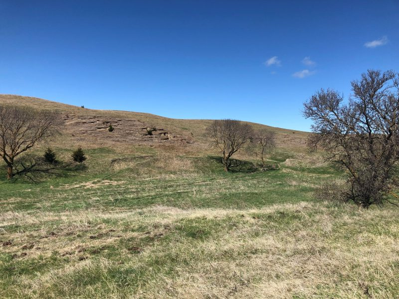 Land Auction 592+/- Acres Valley County, Nebraska