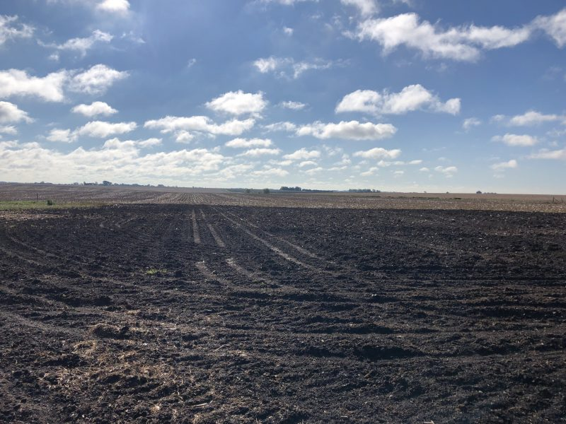 Land Auction 73.62+/- Acres Polk County, Nebraska