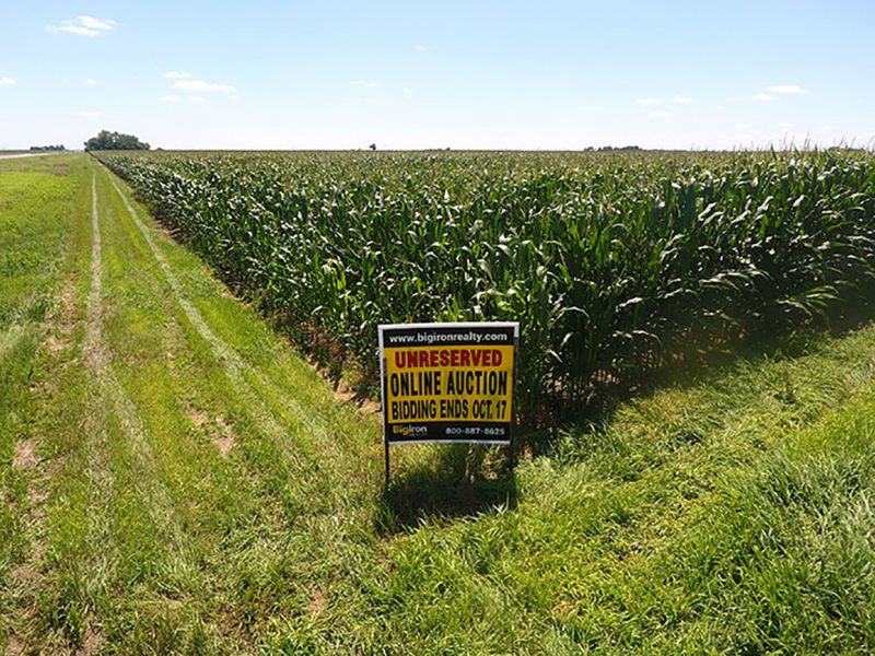 Land Auction 116.38+/- Acres Hamilton County, Nebraska
