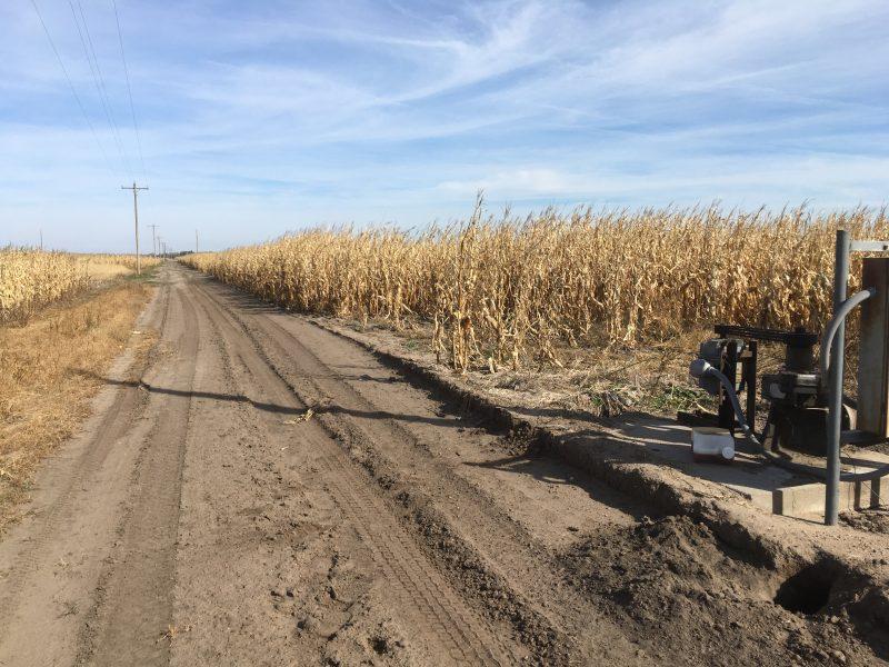Land Auction 79.54+/- Acres Hall County, Nebraska