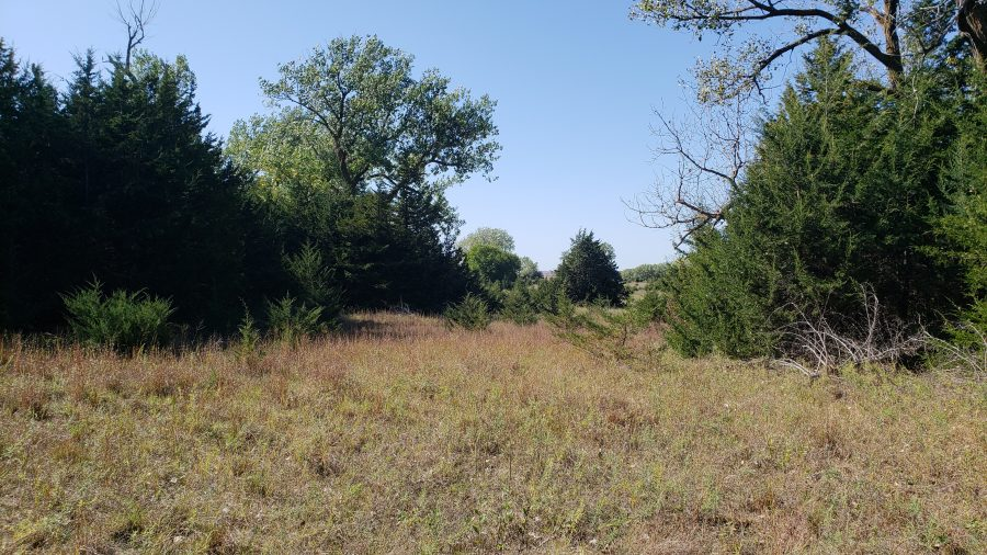 Hunting Lease Auction 1,300 Acres Wheeler County, Nebraska