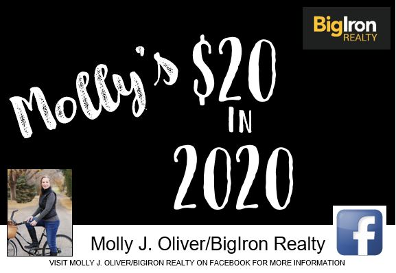 mollys-20-in-2020-picture.jpg