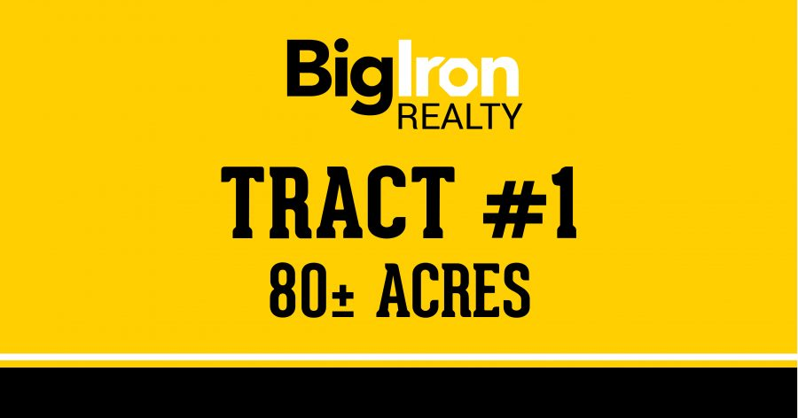 Land Auction 160+/- Acres Platte County, Nebraska selling in 2 Tracts