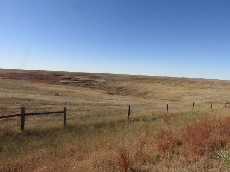 tract-three-pasture.jpg