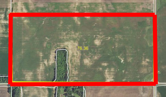 Aerial Map 3-BIR81