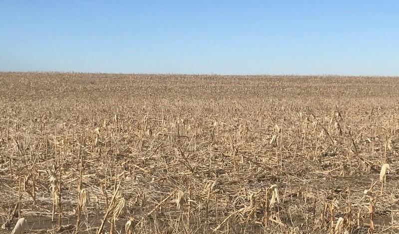 Tract-3-corn-stubble_.jpg